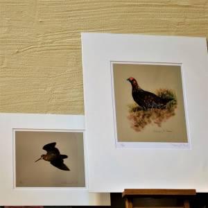Kunstdrucke / Wandbilder, Druckerzeugnisse
